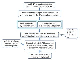 Input DNA template sequences, product size range, database, etc