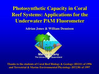 Photosynthetic Capacity in Coral Reef Systems: Applications for the Underwater PAM Fluorometer