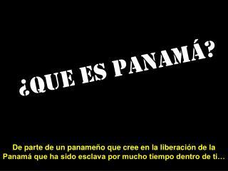 Que es Panam