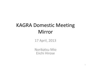 KAGRA Domestic Meeting Mirror