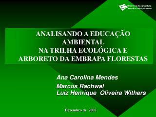 ANALISANDO A EDUCAÇÃO AMBIENTAL  NA TRILHA ECOLÓGICA E ARBORETO DA EMBRAPA FLORESTAS