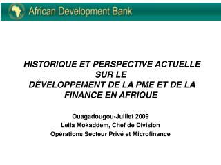HISTORIQUE ET PERSPECTIVE ACTUELLE SUR LE   D VELOPPEMENT DE LA PME ET DE LA FINANCE EN AFRIQUE
