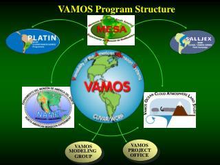 VAMOS Program Structure