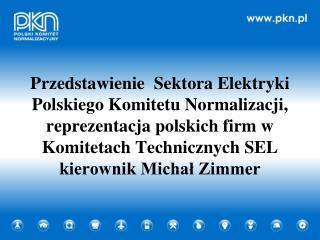 Przedstawienie Sektora Elektryki
