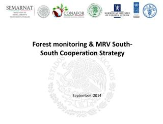 F orest  monitoring & MRV  South-South  Cooperation Strategy
