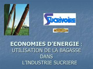 ECONOMIES D ENERGIE :  UTILISATION DE LA BAGASSE DANS     L INDUSTRIE SUCRIERE