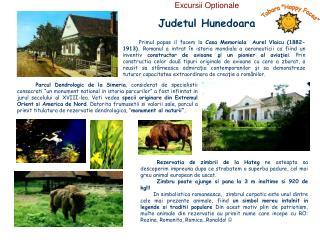Judetul Hunedoara