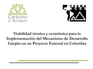 Viabilidad t cnica y econ mica para la Implementaci n del Mecanismo de Desarrollo Limpio en un Proyecto Forestal en Colo