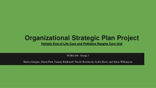 Organizational Strategic Plan Project Holistic End of Life Care and Palliative Respite Care Unit