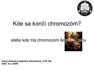 Kde sa končí chromozóm?