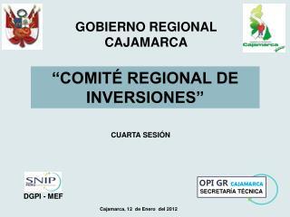 �COMIT� REGIONAL DE INVERSIONES�
