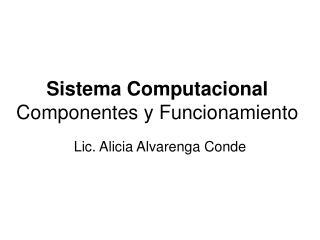 Sistema Computacional Componentes y Funcionamiento