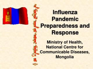 Influenza Pandemic Preparedness and Response