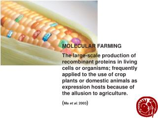 MOLECULAR FARMING The large-scale production of recombinant proteins in living cells or organisms; frequently applied to