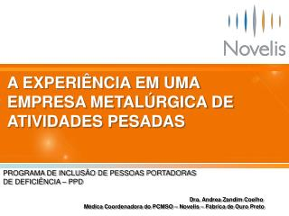 A EXPERIÊNCIA EM UMA EMPRESA METALÚRGICA DE ATIVIDADES PESADAS