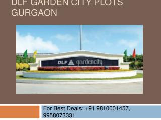 DLF Garden City Plots Gurgaon 9810001457