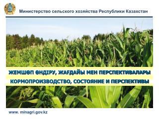 Министерство сельского хозяйства Республики Казахстан