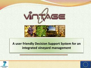 A user friendly Decision Support System for an integrated vineyard management