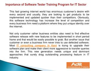 Importance of Software Tester Training Program for IT Sector