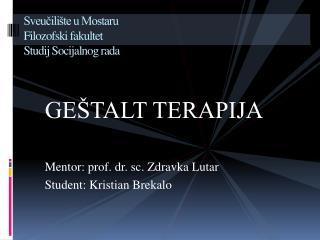Sveučilište u Mostaru     Filozofski fakultet     Studij Socijalnog rada