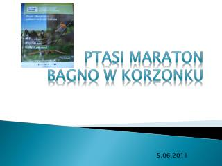 Ptasi Maraton Bagno w Korzonku