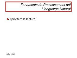 Fonaments de Processament del Llenguatge Natural