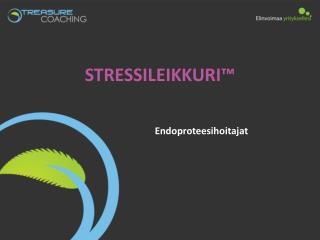 STRESSILEIKKURI™