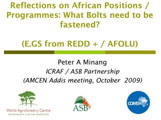 Peter A Minang ICRAF / ASB Partnership (AMCEN Addis meeting, October  2009)