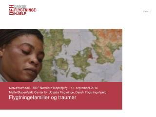 Flygtningefamilier og traumer