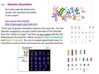 2-5b  Genetic  Disorders