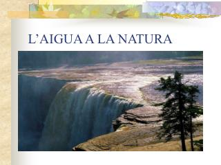 L'AIGUA A LA NATURA