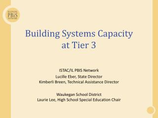 Building Systems Capacity  at Tier 3