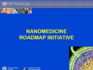 NIH Nanomedicine Roadmap Definitions (nihroadmap.nih/nanomedicine)