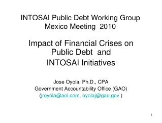 INTOSAI Public Debt Working Group Mexico Meeting  2010