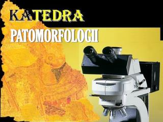 PATOMORFOLOGII