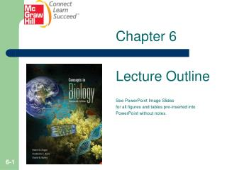 Chapter 6 Lecture Outline See PowerPoint Image Slides for all figures and tables pre-inserted into