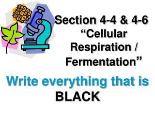 "Section 4-4 & 4-6 ""Cellular Respiration / Fermentation """