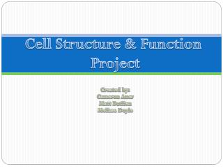 Cell Structure  & Function   Project
