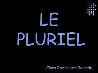 LE PLURIEL Clara Rodríguez Salgado