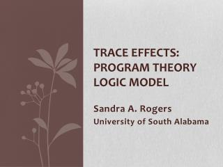 Trace Effects:  Program Theory Logic Model