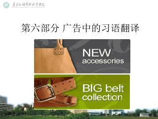 第六部分 广告中的习语翻译