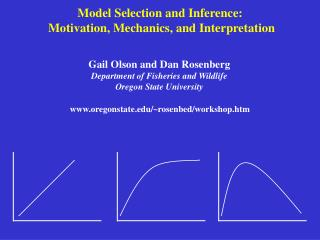 Model Selection and Inference:  Motivation, Mechanics, and Interpretation