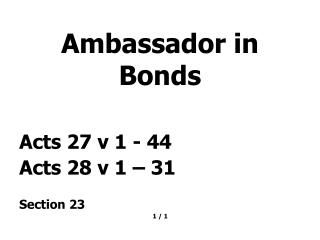 Ambassador in Bonds