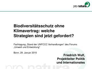Friedrich Wulf,  Projektleiter Politik  und Internationales
