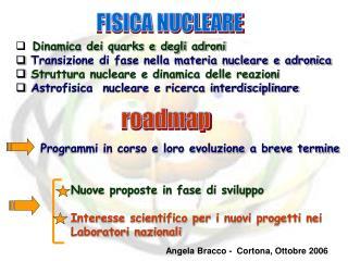 Dinamica dei quarks e degli adroni Transizione di fase nella materia nucleare e adronica