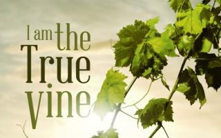"The  Characters  of the Vineyard There is the "" Husbandman "" Tiller of the ground –  Farmer"