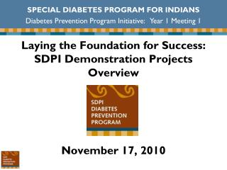 Laying the Foundation for Success: SDPI Demonstration Projects Overview