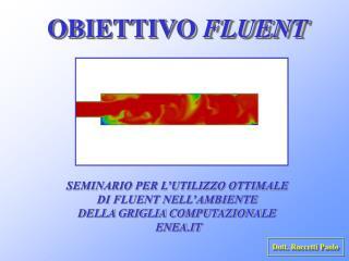 OBIETTIVO  FLUENT