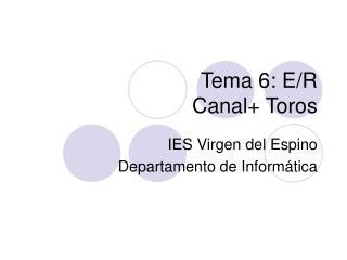 Tema 6: E/R  Canal+ Toros