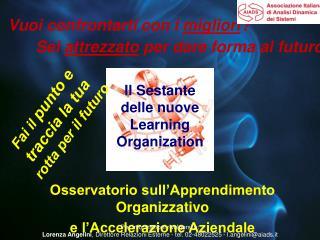 Osservatorio sull'Apprendimento Organizzativo  e l'Accelerazione Aziendale
